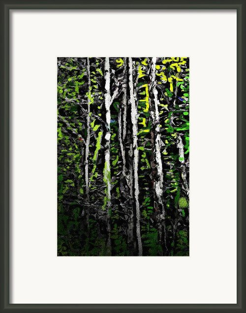 Spring In The Woods Ii Framed Print By David Lane