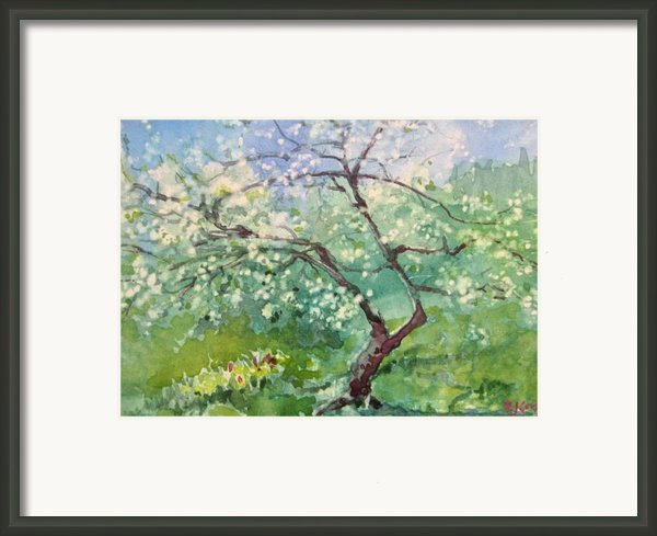 Spring Plum Framed Print By Elizabeth Carr