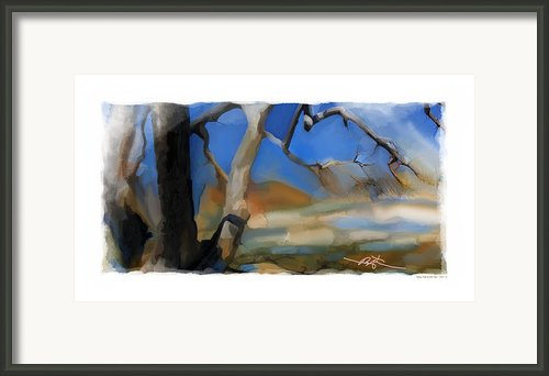 Spring Thaw 2 Variation Framed Print By Bob Salo