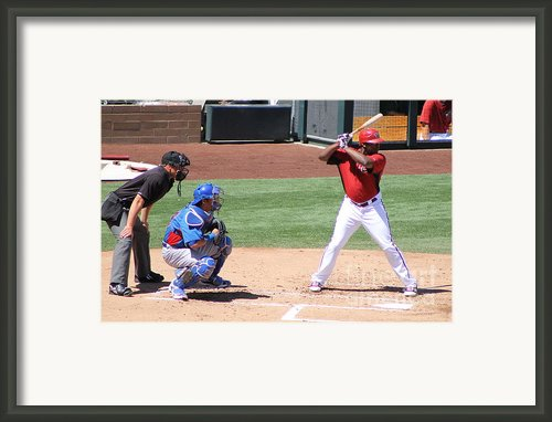 Spring Training 12-4-4 Framed Print By Pamela Walrath