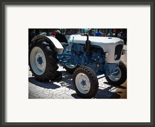 Spyder Bisnonno Framed Print By Digiart Diaries By Vicky Browning