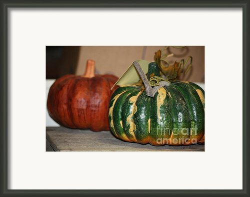 Squash Framed Print By Yumi Johnson