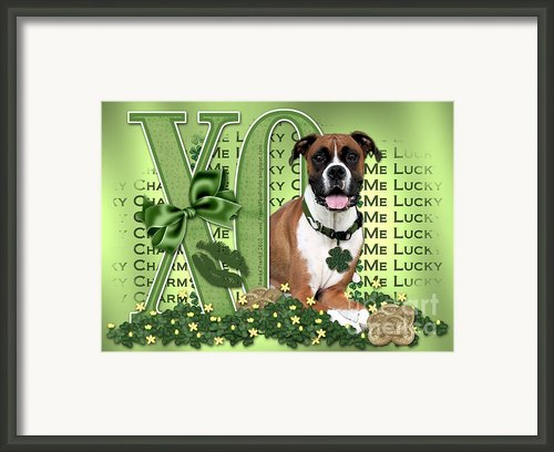 St Patricks Day - My Boxer Is Me Lucky Charm Framed Print By Renae Frankz