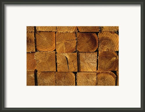 Stack Of Logs Framed Print By David Chapman
