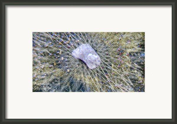Star Hip 53550  Framed Print By Augusta Stylianou