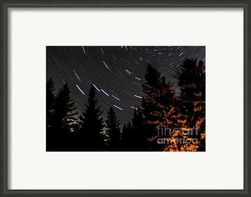 Star Trails Above Spruce Tree Line Framed Print By Darcy Michaelchuk