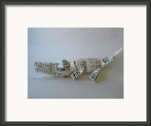 Starbucks Gator Framed Print By Alfred Ng