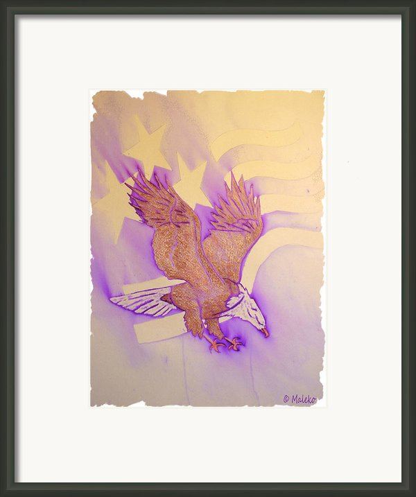 Stars And Stripes Framed Print By Mark Schutter