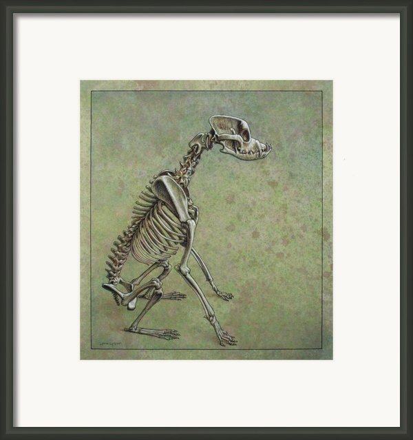 Stay... Framed Print By James W Johnson