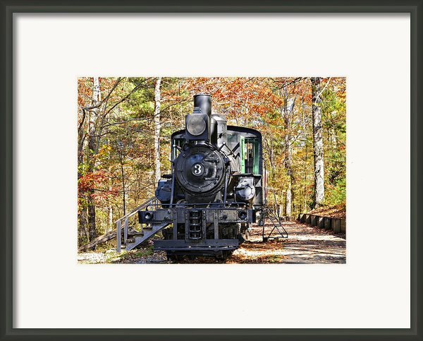 Steam Locomotive On Display Framed Print By Susan Leggett