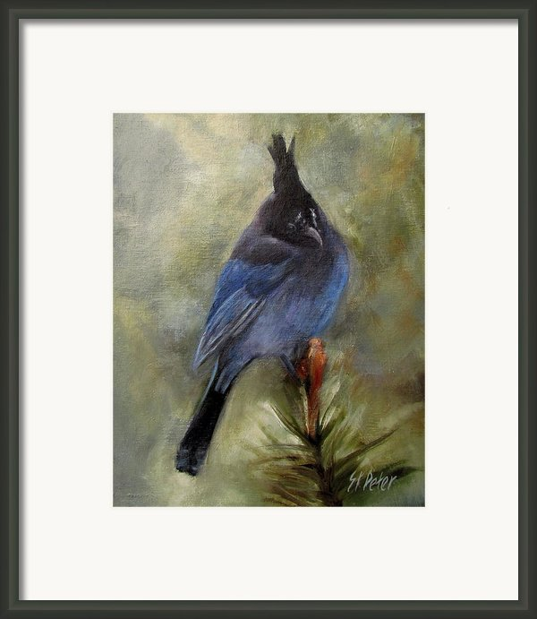 Stellar Of A Bird Framed Print By Mary St Peter