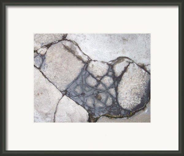 Step On A Crack Framed Print By Anna Villarreal Garbis