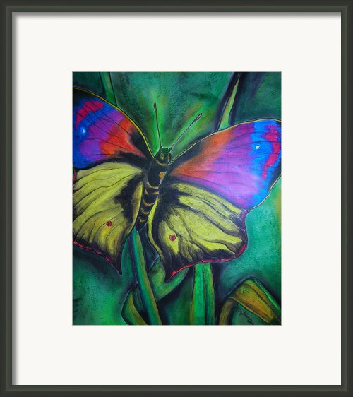 Still Butterfly Framed Print By Juliana Dube