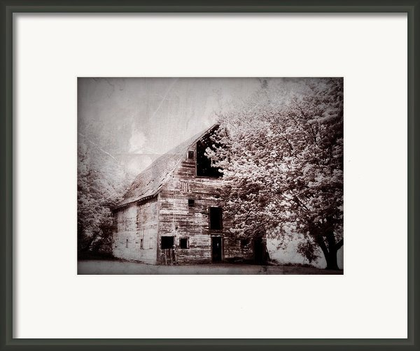 Still Here Framed Print By Julie Hamilton