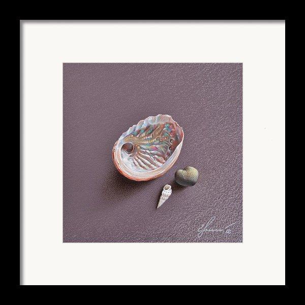 Still Life With Abalone Shell Framed Print By Elena Kolotusha