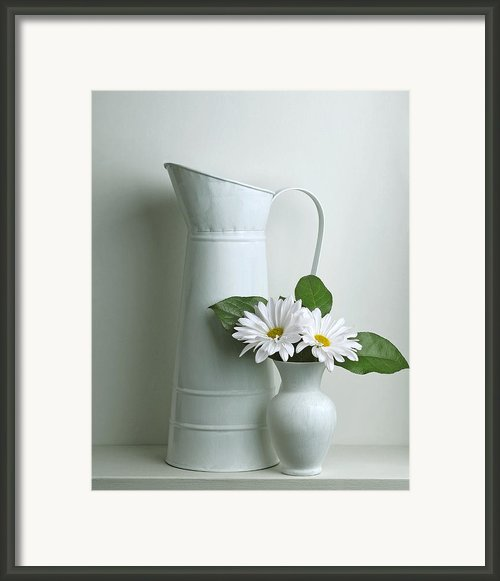 Still Life With Daisy Flowers Framed Print By Krasimir Tolev