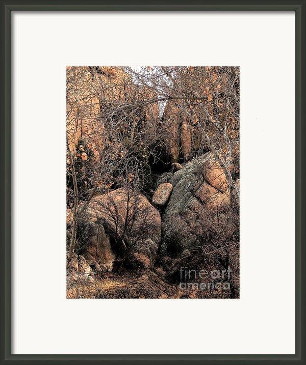 Stoned Framed Print By Robert Hooper