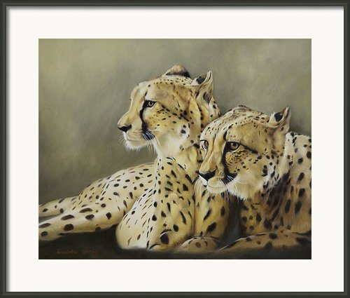Stranger In The Midst. Framed Print By Lucinda Coldrey