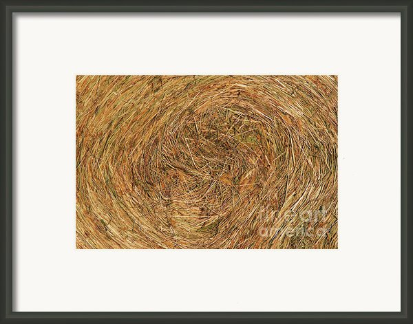 Straw Framed Print By Michal Boubin