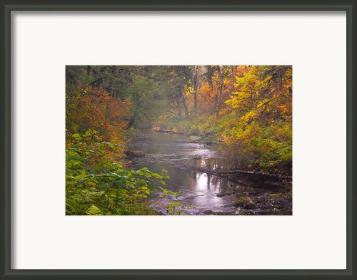 Stream Of The Fall Framed Print By Dale Stillman