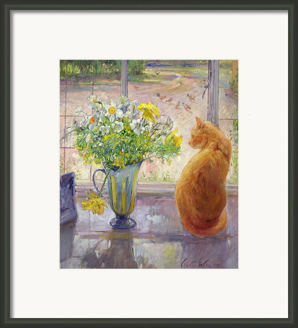 Striped Jug With Spring Flowers Framed Print By Timothy Easton