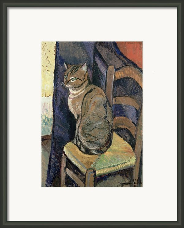 Study Of A Cat Framed Print By Suzanne Valadon