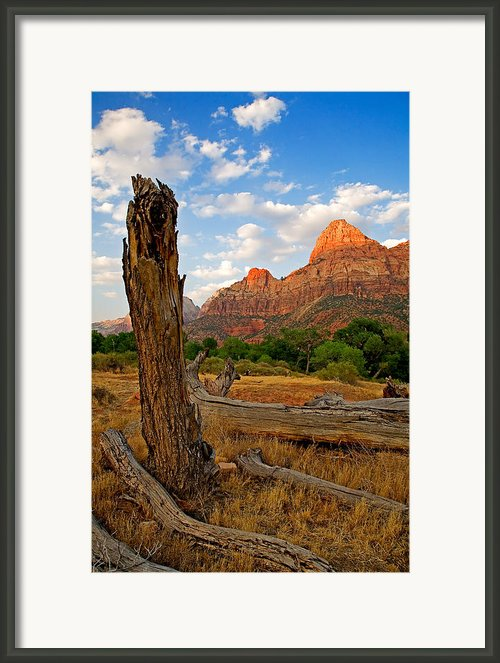 Stumped At Zion Framed Print By Peter Tellone