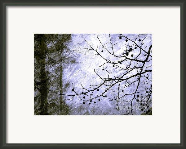 Sudden Snowstorm Framed Print By Judi Bagwell