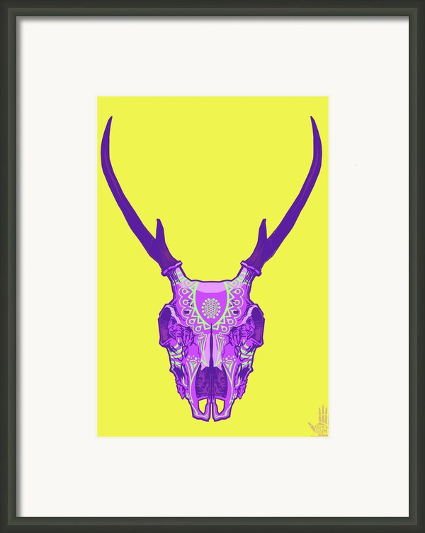 Sugar Deer Framed Print By Nelson Dedos Garcia