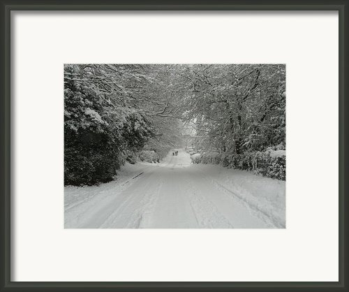 Sugar Road Iii Framed Print By Rdr Creative