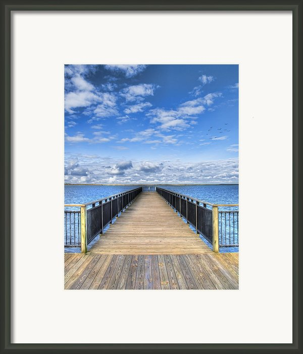 Summer Bliss Framed Print By Tammy Wetzel