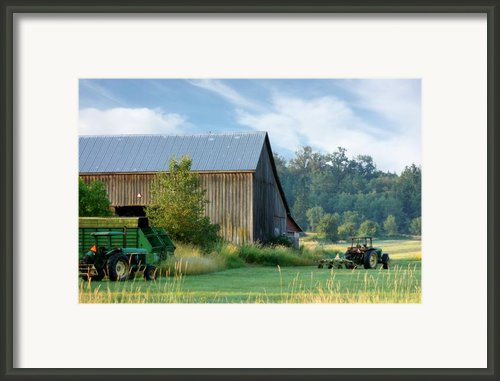 Summer On The Farm Framed Print By Barbara  White