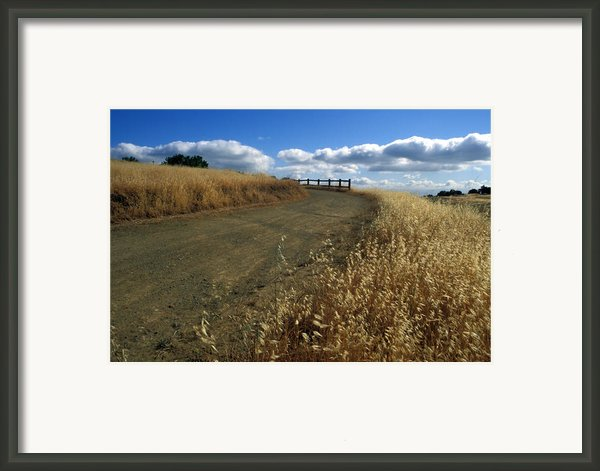 Summer Road Framed Print By Kathy Yates