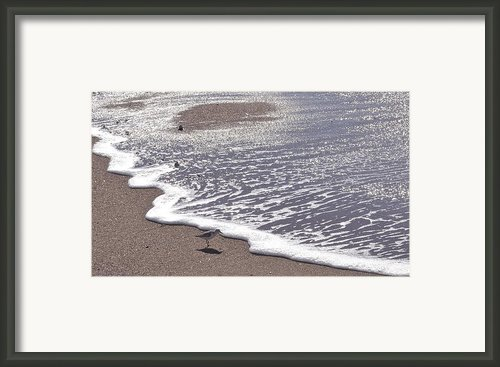 Summer Shimmer Framed Print By Cindy Lee Longhini