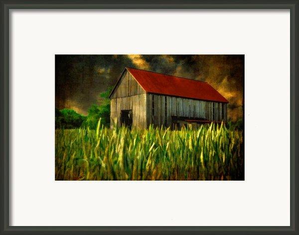 Summer Storm Framed Print By Lois Bryan