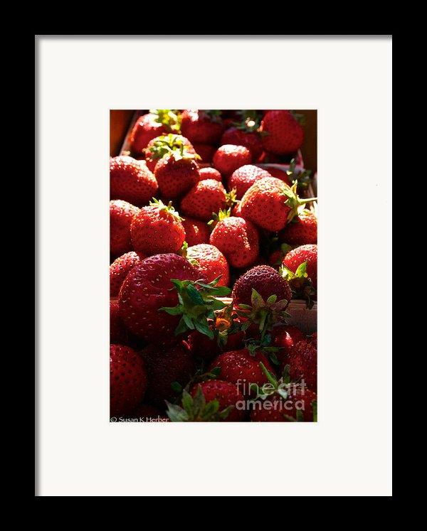 Sun Ripened Framed Print By Susan Herber