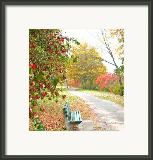 Sunday Peace Framed Print By Barbara Mcdevitt