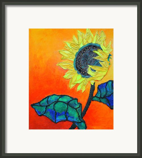 Sunflower Framed Print By Diane Fine