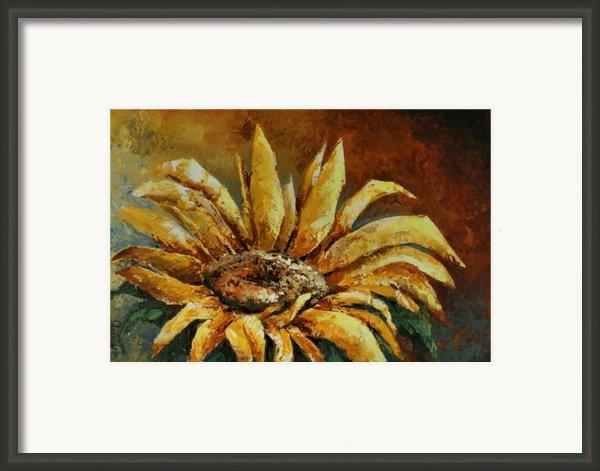 Sunflower Study Framed Print By Michael Lang