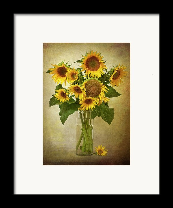 Sunflowers In Vase Framed Print By © Leslie Nicole Photographic Art