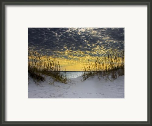 Sunlit Passage Framed Print By Janet Fikar