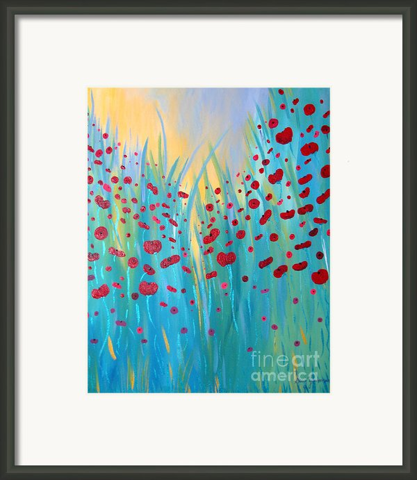 Sunlit Poppies Framed Print By Stacey Zimmerman