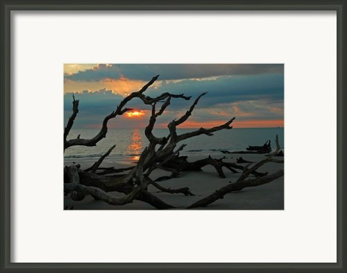 Sunrise At Driftwood Beach 2.2 Framed Print By Bruce Gourley