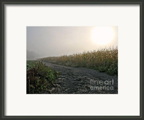 Sunrise Over Country Road Framed Print By Olivier Le Queinec