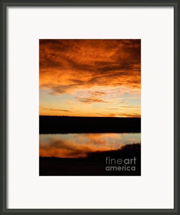 Sunrise Reflections Framed Print By Sara  Mayer