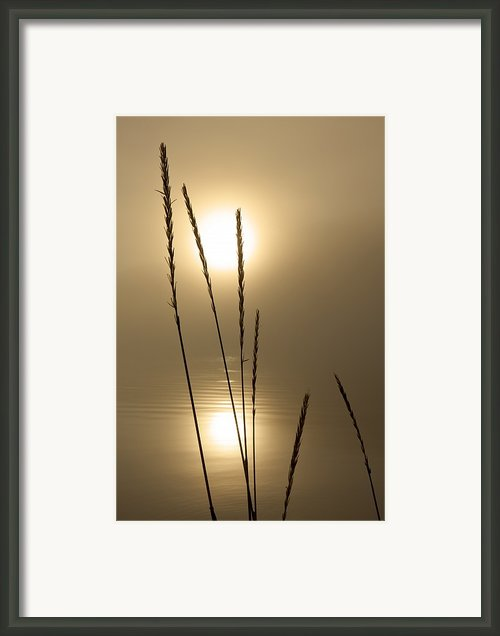 Sunset And Beach Grass Framed Print By John Hyde - Printscapes