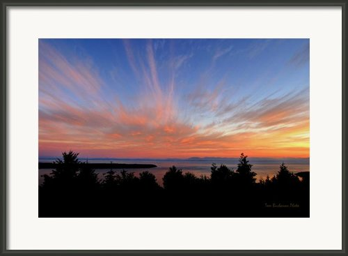Sunset Over Cypress Framed Print By Tom Buchanan