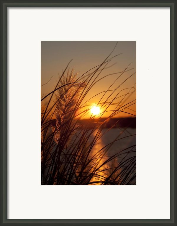Sunset Over Lake Wylie Sc Framed Print By Dustin K Ryan