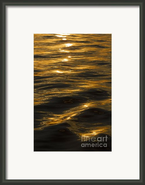 Sunset Reflections Framed Print By Dustin K Ryan