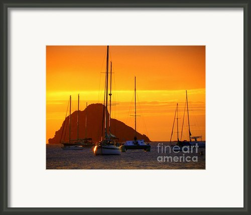 Sunset Sails Framed Print By Karen Wiles
